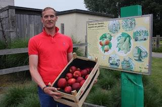 Fruitbedrijf Vermeir p46