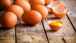 Eieren cholesterol ei egg 1