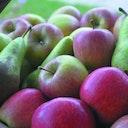 Hemelrijkfruit