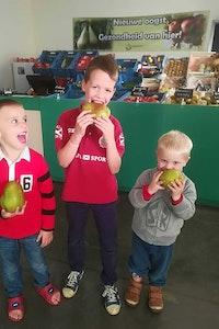Hoevewinkel Fruit-land
