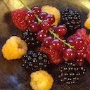 Slowberry