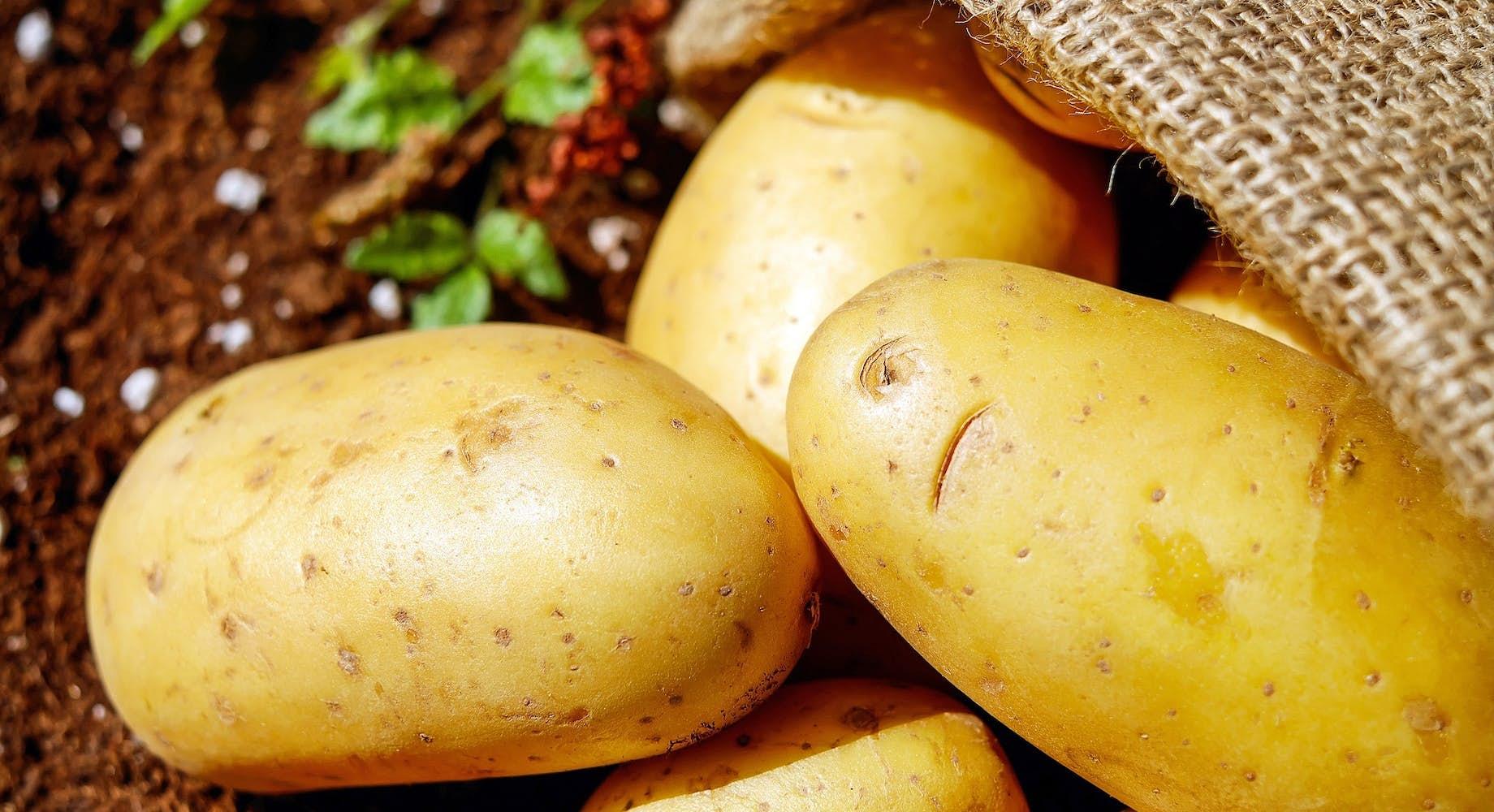 Aardappelen (vast)