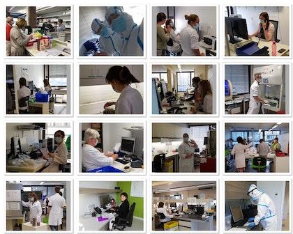 Collage finaal website