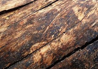 Header wood 1