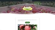 Lembi Fruit